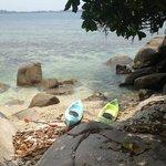 Kayaking to the pool