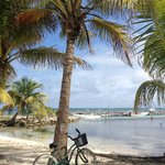 The bike we borrowed to explore the island