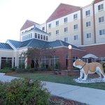 Foto de Hilton Garden Inn Starkville