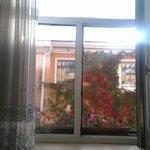 Цветочки на окне