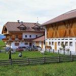 Urlaub auf dem Bauernhof im Rainerhof