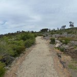 The easy walking trail from Reeds Lookout to the Balconies