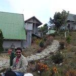 Jhandi Eco Huts