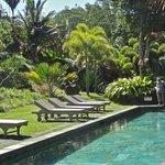 une des 2 piscines communes
