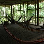 Hammock Room at the lodge