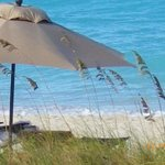 Relax on one of the best beaches in the world,Grace Beach