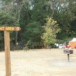 Tent Area B