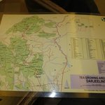 Map of Darjeeling tea estates
