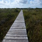 The boardwalk to nowhere