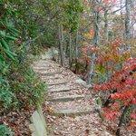trail to pinnacle