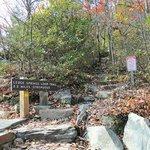 strenuous 2.2 mile ledge loop trail