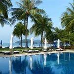 Pool Area Casa Del Mar