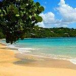 beautiful friendship beach