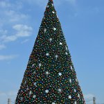 Christmas Tree on the Malecon 2013