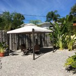 Traveller palm  gazebo and seating area