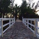 Gazebo bridge.