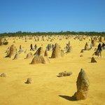 Pinnacles Desert 1