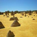 Pinnacles Desert 2