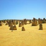 Pinnacles Desert 3