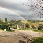 Rainbow at the Villa Field