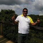 Desde la torre del observatorio de aves en el pipeline road Gamboa Rain Forest.