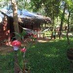 Coconut Leaf Villa
