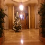 l ingresso con il l albero di natale