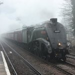 Steam special passes the Bistro going to York
