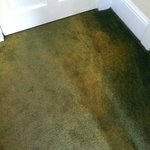 Discolored Carpeting