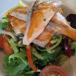 Salmon & Green Salad