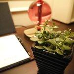 寫字檯上的小盆栽