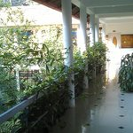 Отель с внутренним зеленым двориком!