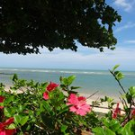 vista do deck do local....Flores de hibiscus na praia? Luxo!!!