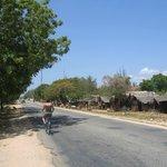Ukunda area biking trip