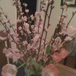 Flowers from the Santa Barbara farmer's market