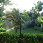 Gardens in Bahia Principe Ambar
