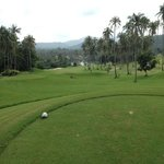 dogleg right don't hit right hand side coconut tree like I did