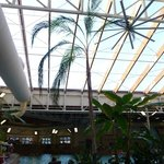 Wilderness Indoor Waterpark