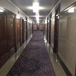 The hallwAy on floor 6.