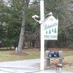 Schmidt's Tree Farm