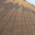 Ausflug mit Kamelen