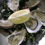 Entrée : 6 huîtres n°4