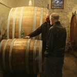 Visit to winery