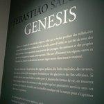 Genesis de Sebastião Salgado