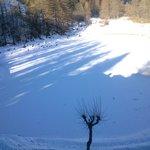 Lago ghiacciato ricoperto di neve...con le impronte di una volpe