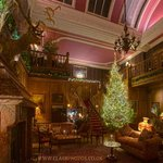 The main hall - with the amazing Christmas tree