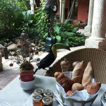 Local toucans like stealing bread