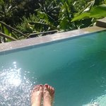 our plunge pool on our last day/Mango Hilltop