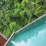 Private pool in the edge of the rain forest