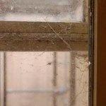 Dirty Window.